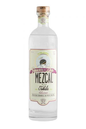gracias a dios mezcal, thankgad, mezcal, agave, maguey, matatlan, oaxaca, tobalá, agave potatorum, potatorum, agave silvestre, silvestre, sustainable